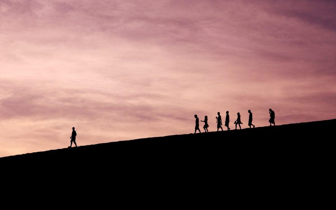 Leader en conservation : en êtes-vous un ou aspirez-vous à le devenir?