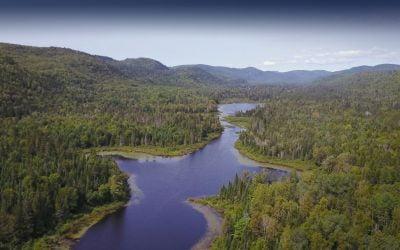 Conservation et mise en valeur du bois du Mont-Saint-Bruno à Sainte-Julie