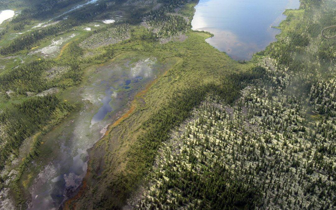 La plus grande réserve naturelle en milieu municipal au Québec : la municipalité du Canton de Shefford fait preuve de leadership