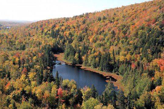La contribution d'Environnement et changement climatique Canada envers l'atteinte du 17 % d'aires protégées au Canada d'ici 2020